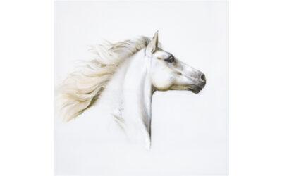 Wandbild Pferde – Studie III 7/25 limitiert